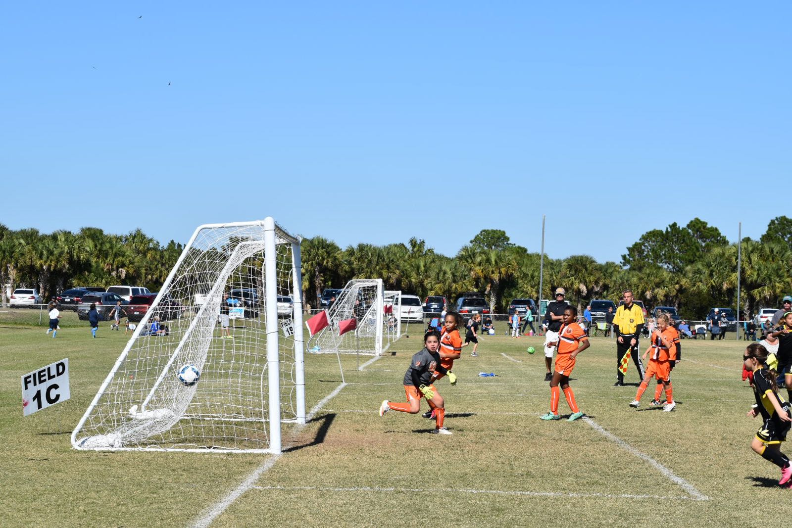 Tournament Life: Phoenix Cup Palm Bay Champions